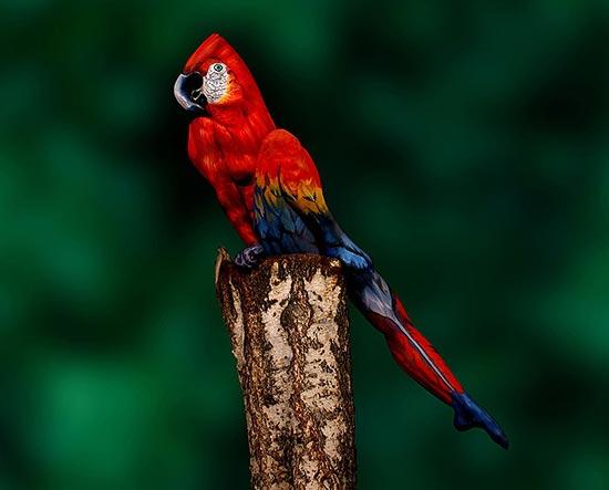 amazing-body-painting-facinating-bird