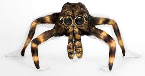 amazing-body-painting-spider