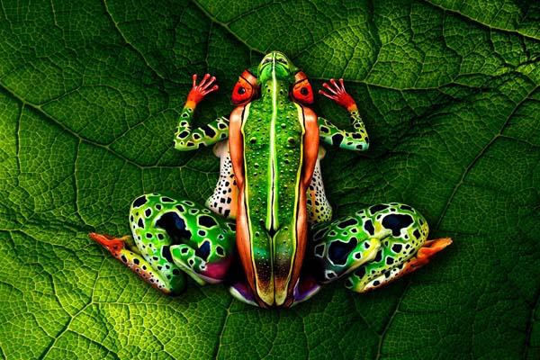 amazing-body-painting-treefrog