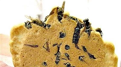 15-weird-foods-Wasp-Crackers