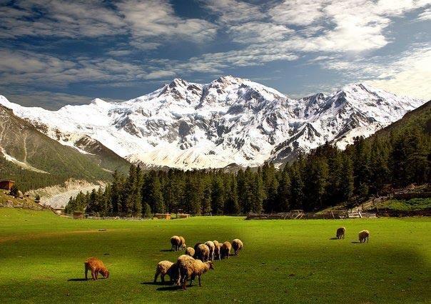 9-reason-to-visit-pakistan-karakoram