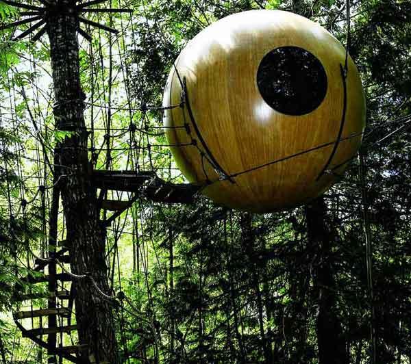 amazing-treehouses10