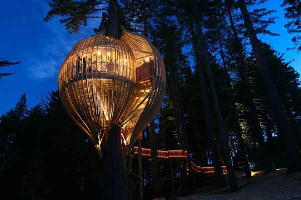 amazing-treehouses2
