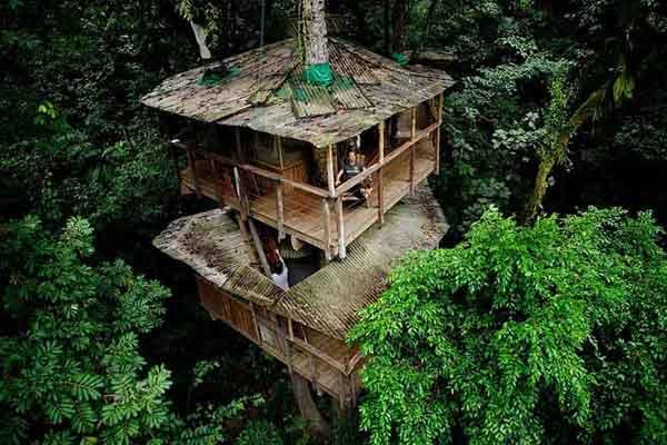 amazing-treehouses3