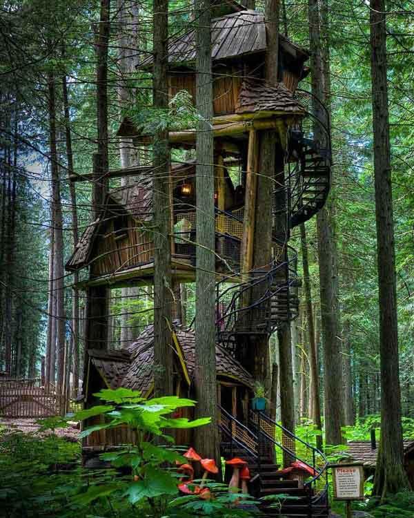 amazing-treehouses7