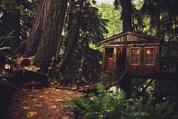 amazing-treehouses9