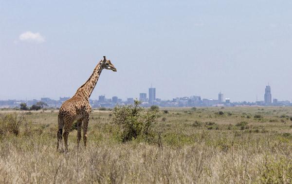 top-20-beautiful-countries-Kenya.