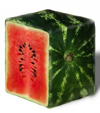 top-5-most-expensice-fruit-in-world-square-watermelon