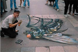 amazing-painting-on-streets-the-world-biggest-fly