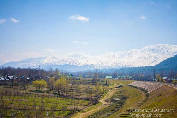 india-most-beautiful-rail-tours-1