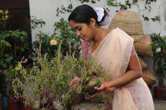 worshiping-tulsi-plant