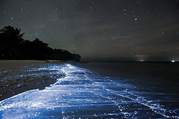top-10-amazing-events-on-earth-vaadhoo-island-maldives