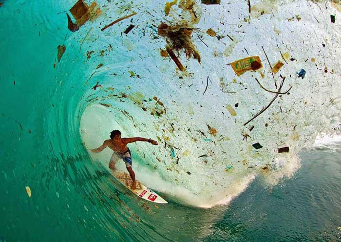 विश्व पर्यावरण दिवस, इंडोनेशिया